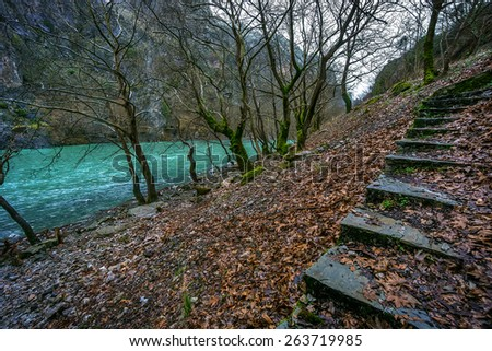 Riverside from Aoos river in wintertime with fallen planetree leafs - stock photo