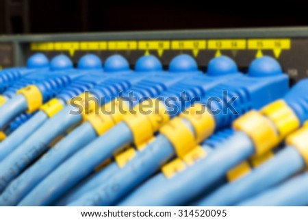 RJ45 CAT6 Lan cable connected to switch in soft focus