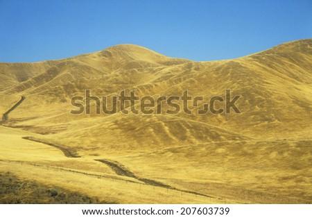 Road across yellow hills - stock photo