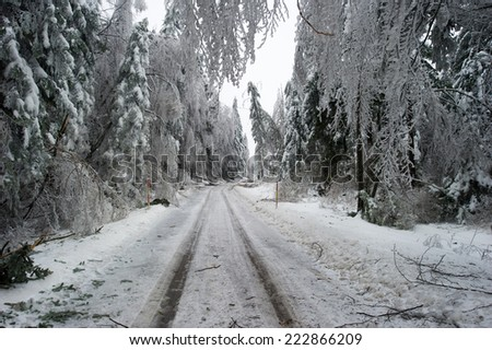 Road after a snow storm, - stock photo