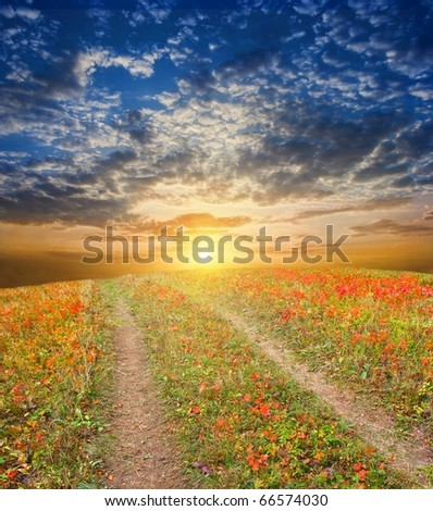 road among a autumn field - stock photo