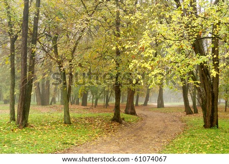 Road among trees in misty autumn park