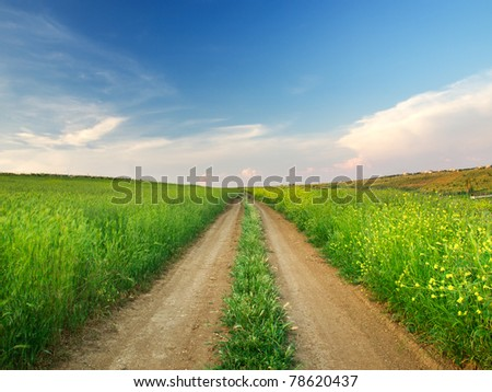 Road amongst green meadow and bright sky - stock photo