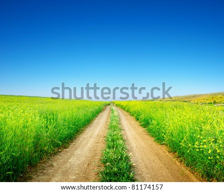 Road and bright clean sky. Composition of the nature - stock photo