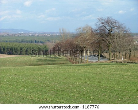 road and fields - stock photo