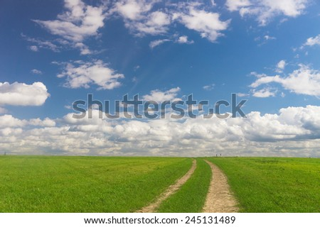 Road and Nobody Fields of Sunlight  - stock photo