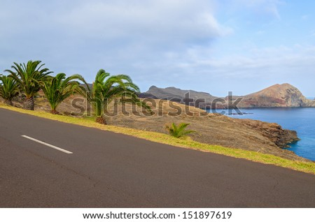 Road and palm trees on side at Punta de Sao Lourenco peninsula, Madeira island, Portugal - stock photo