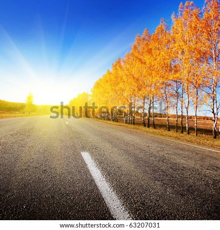 Road and sunny autumn day. - stock photo