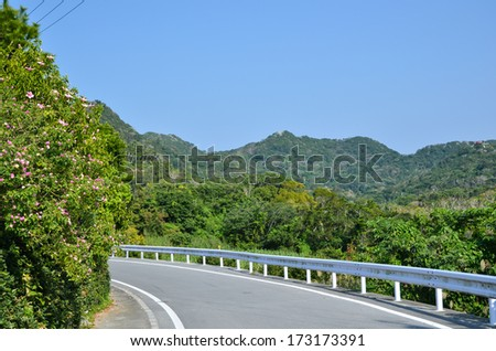 Road curve with railing at the japanese island Okinawa