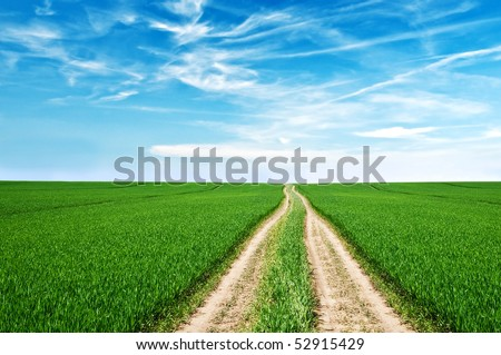 road, field and cloudy sky - stock photo