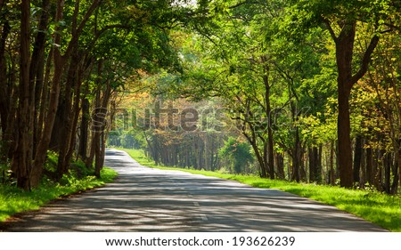 Road going inside through the forest  Bandipur,Karnataka.Bandipur National Park, established in 1974 as a tiger reserve under Project Tiger - stock photo