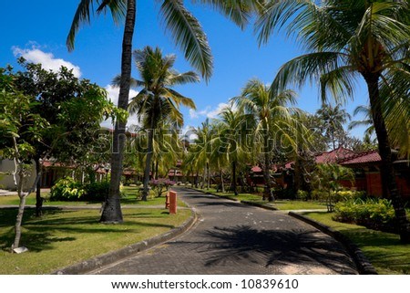 Road in a tropical resort among bungalows