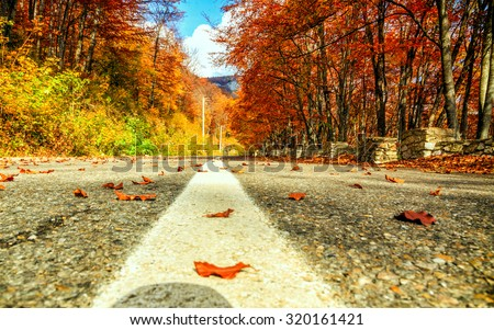 Road in autumn beech landscape in Transylvania-Romania - stock photo