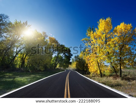road in Autumn woods with colorful foliage tree in rural area.  - stock photo