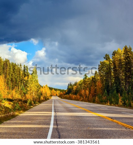 Road in Banff National Park. Great orange and yellow autumn forest illuminated by the sunset. Canada, Rocky Mountains