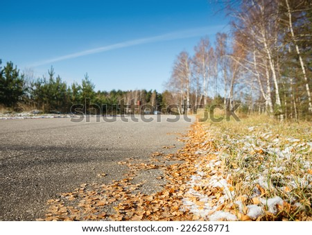 Road in cold autumn forest - stock photo
