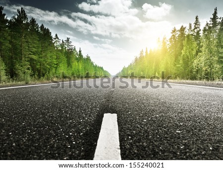 road in deep forest - stock photo