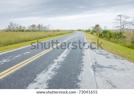 road in Everglades National Park, Florida, USA - stock photo