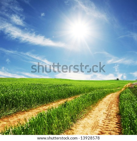 Road in field - stock photo