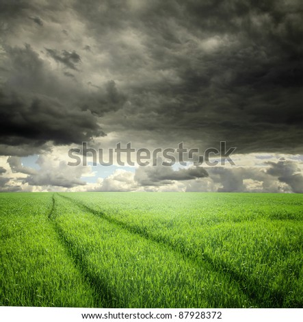 Road in field and stormy clouds