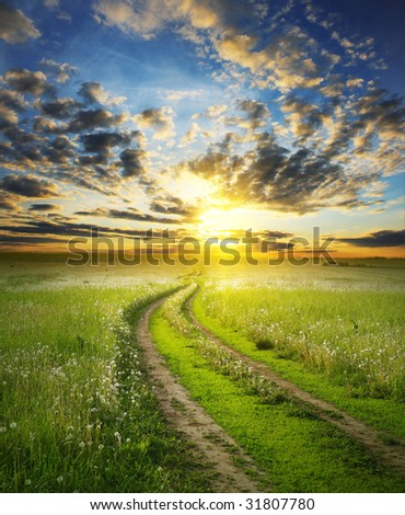 Road in field under sunset