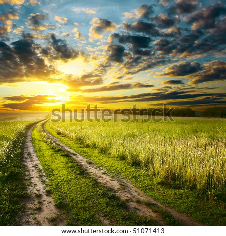 Road in field under sunset light - stock photo
