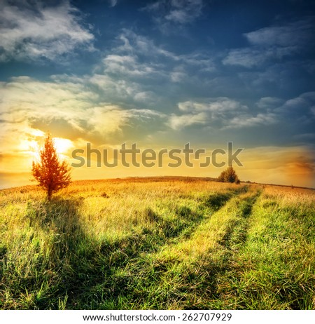 Road in field with green grass on a background of dramatic sky at sunset - stock photo