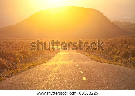 road in fields at sunrise - stock photo