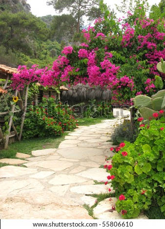 road in flowering colorful garden - stock photo