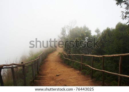 Road in fog. - stock photo
