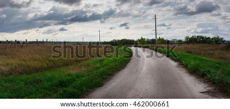 Road in grass