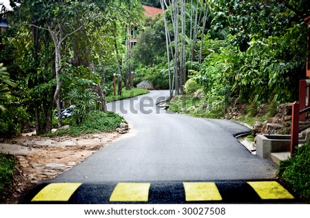Road in green malaysia rainforest. Ecotourism. - stock photo