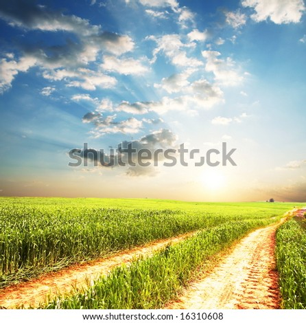 Road in mountains meadow - stock photo