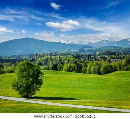 Road in pastoral idyllic german countryside with Bavarian Alps in background on beautiful summer day - stock photo