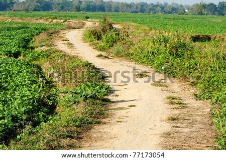 road in rural thailand - stock photo