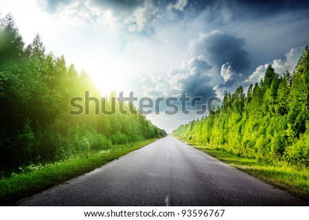 road in Russian forest - stock photo
