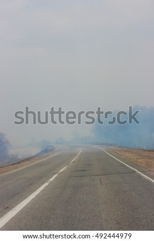 Road in smoke of the forest fire