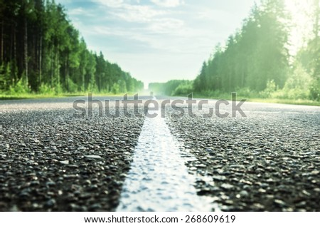 road in sunny forest (shallow DOF) - stock photo