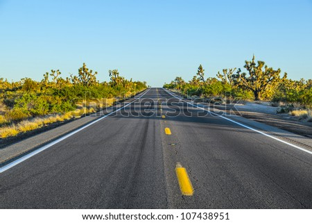 road in sunset - stock photo