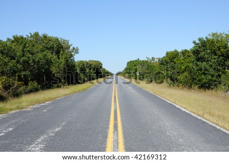 Road in the Everglades National Park, Florida USA - stock photo