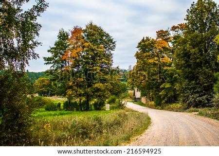 Road in the fall - stock photo