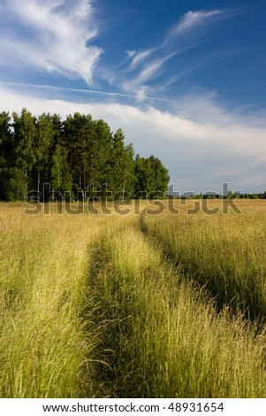 road in the field - stock photo