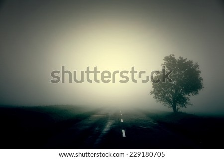 Road in the fog - stock photo