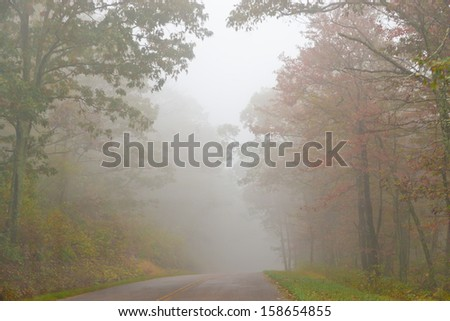 Road in the foggy forest. Autumn landscape. - stock photo