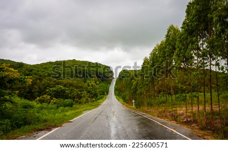 road in the forest and use low gear - stock photo