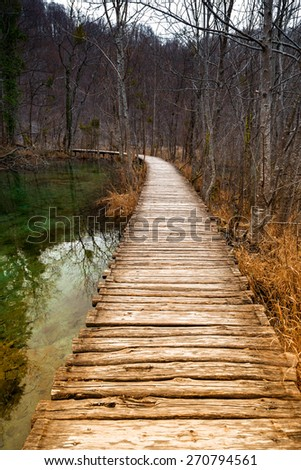 Road in the forest at autumn with lake - stock photo