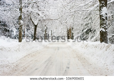 Road in the forest during the winter - stock photo