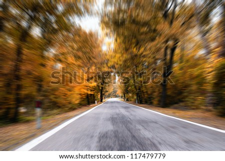 road in the forest in autumn - stock photo