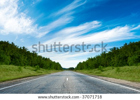 road in the forest under blue skies - stock photo
