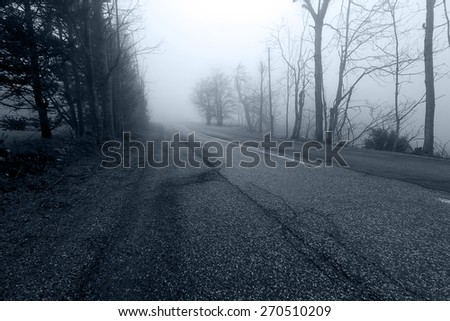Road in the mist - stock photo